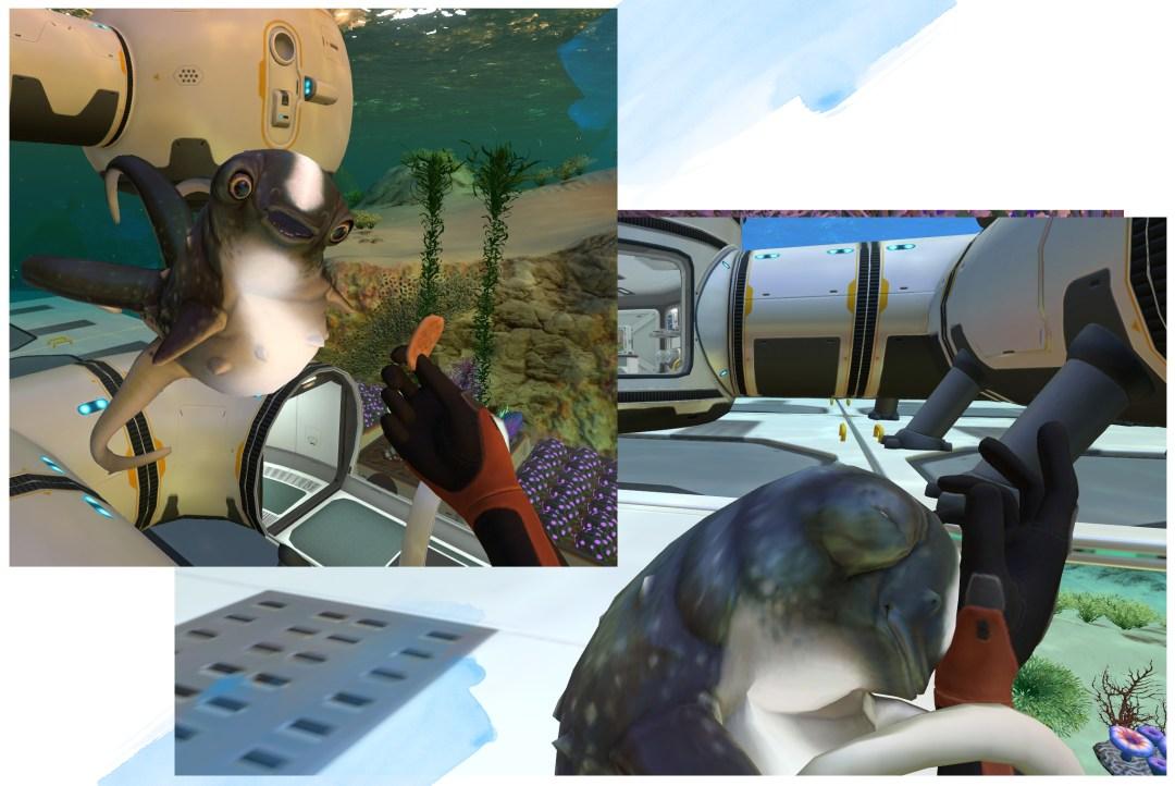 Subnautica Cuddle Fish.jpg