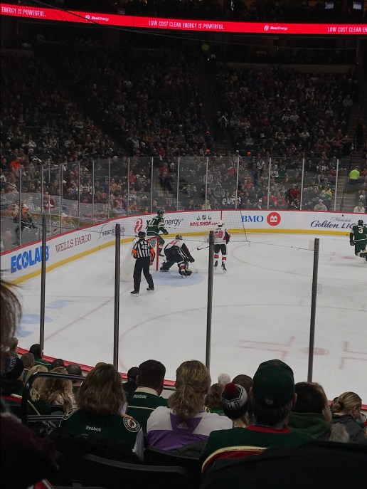Wild Hockey Game
