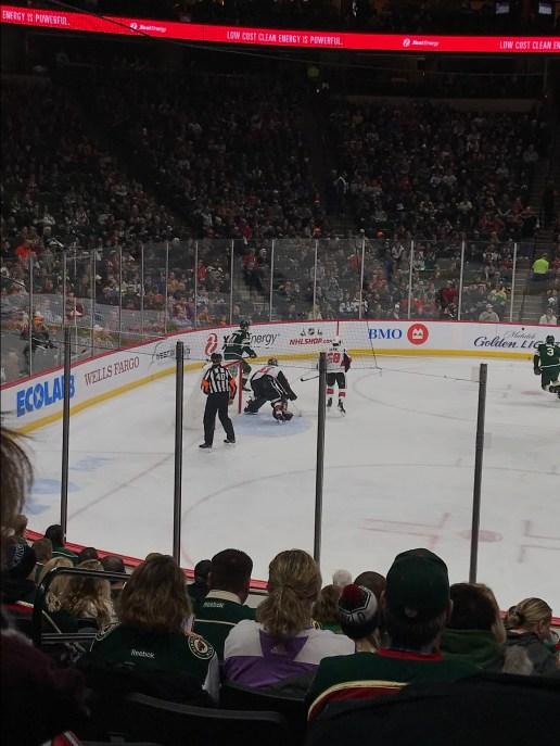 Wild Hockey Game