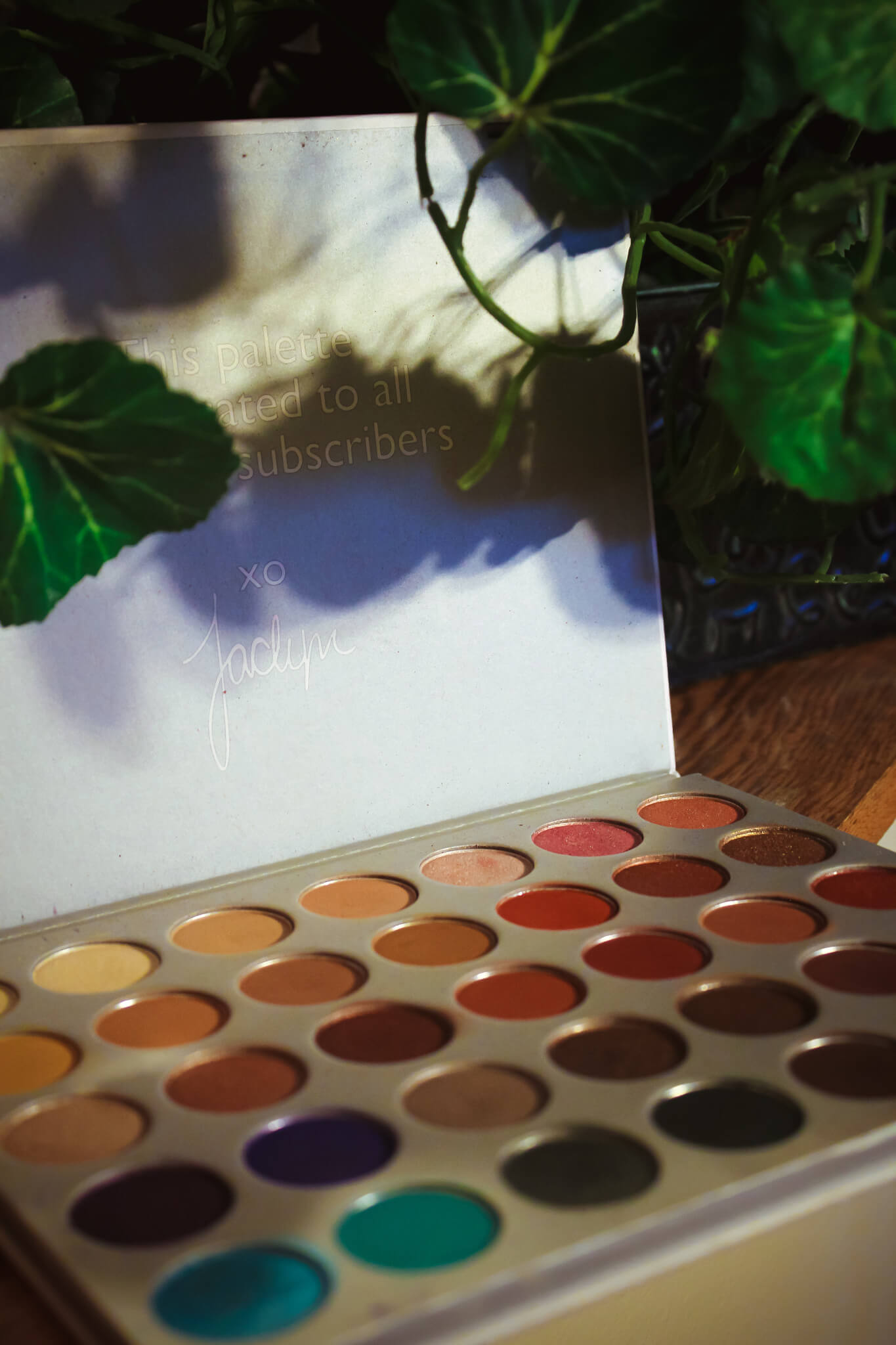 Did Morphe Change the Formula on the Original Jaclyn Hill Palette? 2