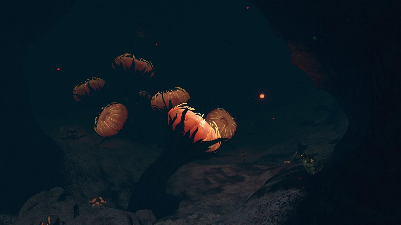 Subnautica Below Zero: Where Are Each Biome Located? 4