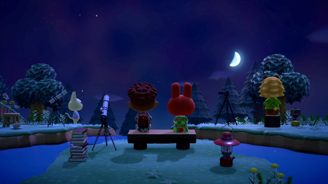 A Beginner's Look at Animal Crossing New Horizons 7