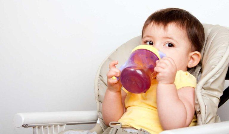 Suco Para Bebês: a Partir de Qual Idade Pode Dar?