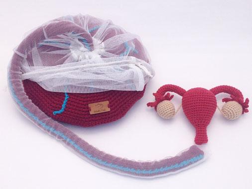 Placenta: o órgão que nutre e mantêm a vida do bebê