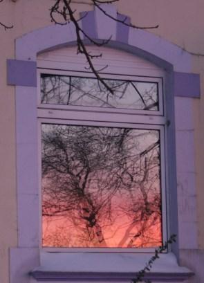 Wohnst Du auch in einem Haus mit goldenen Fenstern?