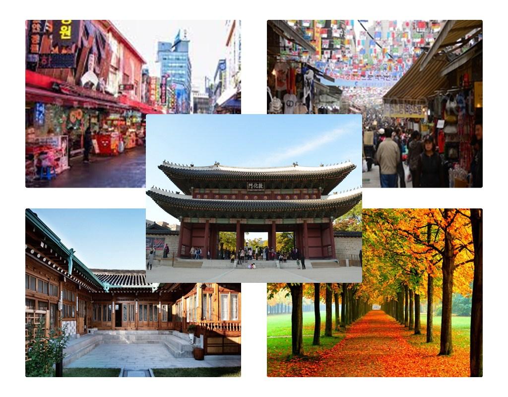 Open Trip Korea Selatan untuk Muslim