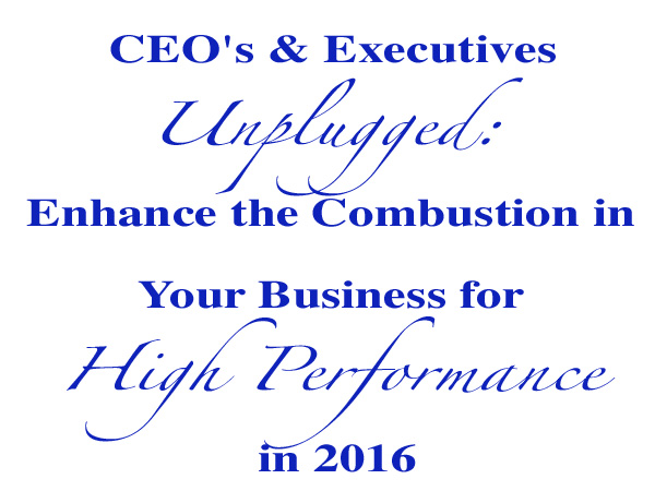 CEO's & Executives Unplugged: Enhance the Combustion in Your Business for High Performance in 2016