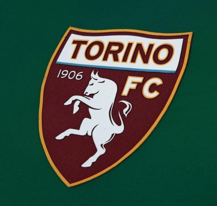 logo jersey torino