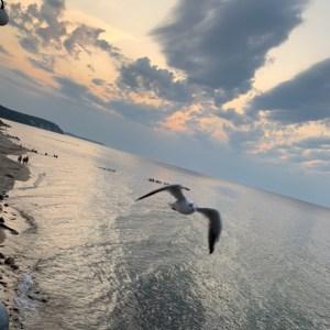 Путешествие в Светлогорск в Калининградской области в августе
