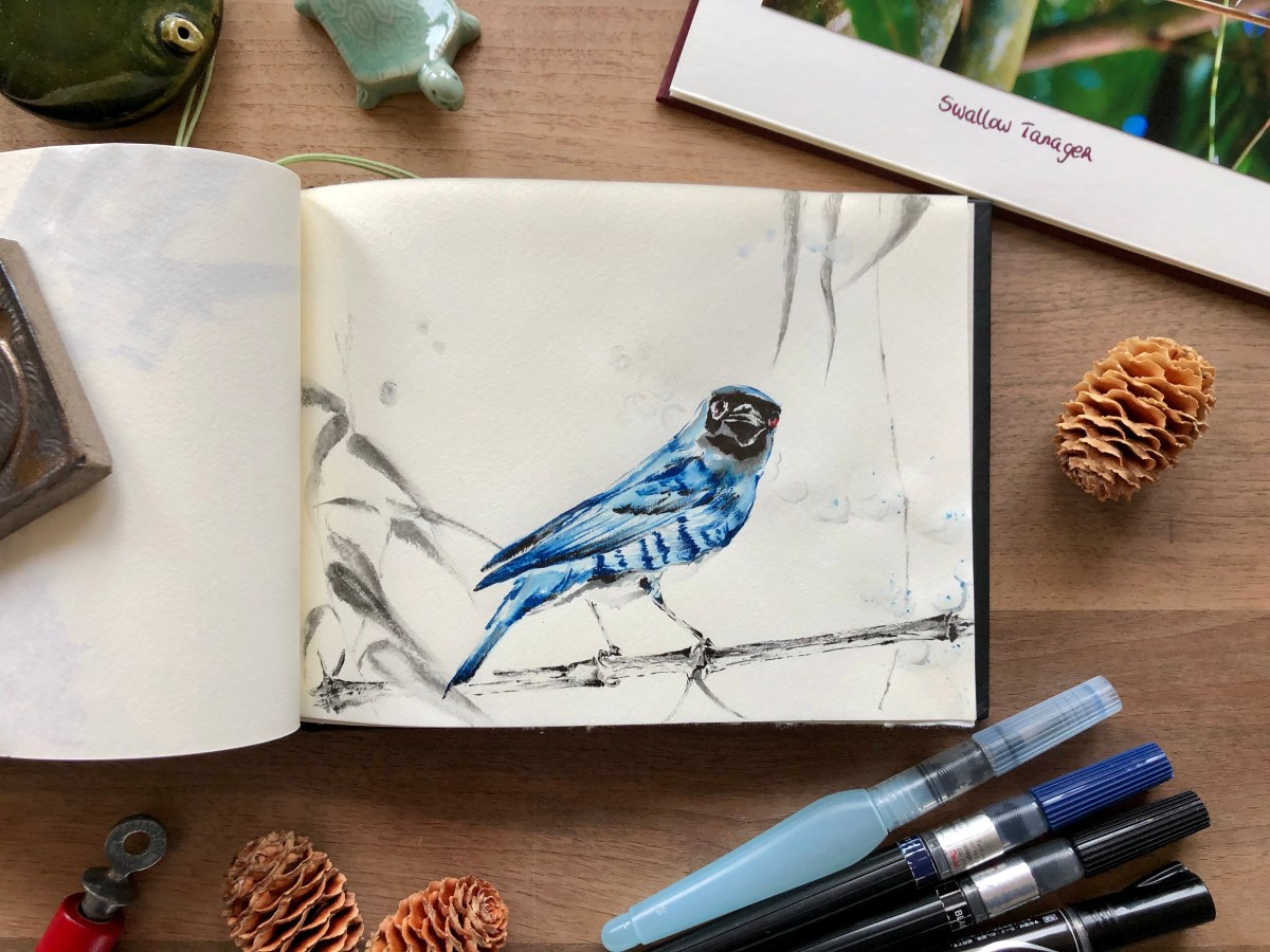 Tanager painting