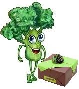 legumes en folie aubergine grocolis 1