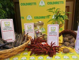 """Coldiretti: """"I superfood valorizzano il grande patrimonio della biodiversità"""" CorriereAl"""