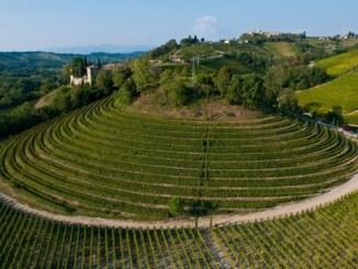 Friuli-Venezia Giulia: La terra e la luce [Abbecedario del gusto] CorriereAl