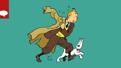 Bild von Comic-Review: Tim und Struppi Kompaktausgabe Band 1