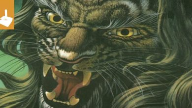 Photo of Spiele, die ich vermisse #88: Lionheart