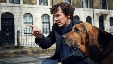 Bild von Netflix sichert sich die internationalen Rechte an Dracula-Serie von den Sherlock-Machern