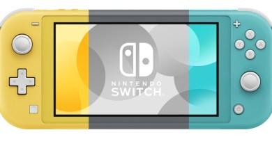 Bild von Kolumne: Kann das gut gehen? – Nintendo Switch Lite