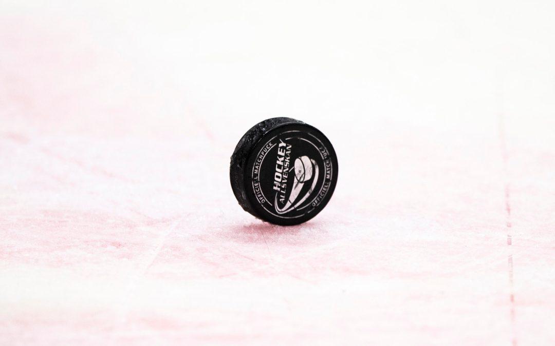 HockeyAllsvenskan vill anföra följande