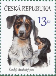 Česká pošta: Česká národní plemena psů – Český strakatý pesv