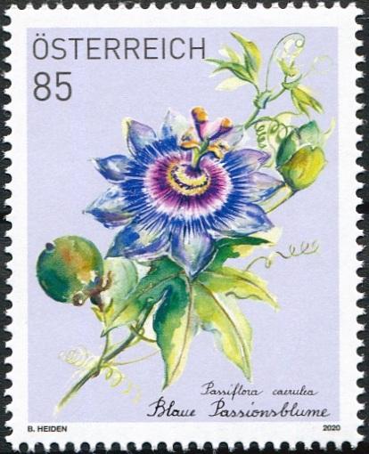 Rakousko: Mučenka modrá – známka pro abonenty