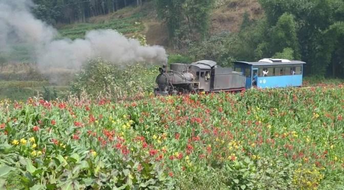 CTOUR vor Ort: Nostalgie auf Schienen – Mit dem historischen Jiayang Dampfzug durch Sichuan