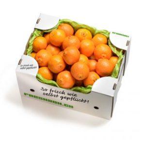 Mandarindlibox_Magazin_Freshbox