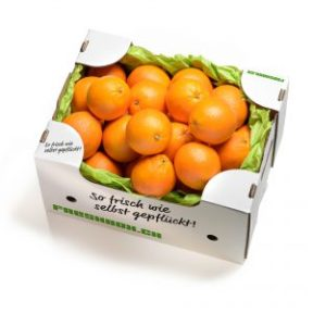 Orangenbox_Magazin_Freshbox