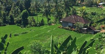 An diesen und viele weitere traumhafte Orte entführt Sie unser Reisebericht Bali.