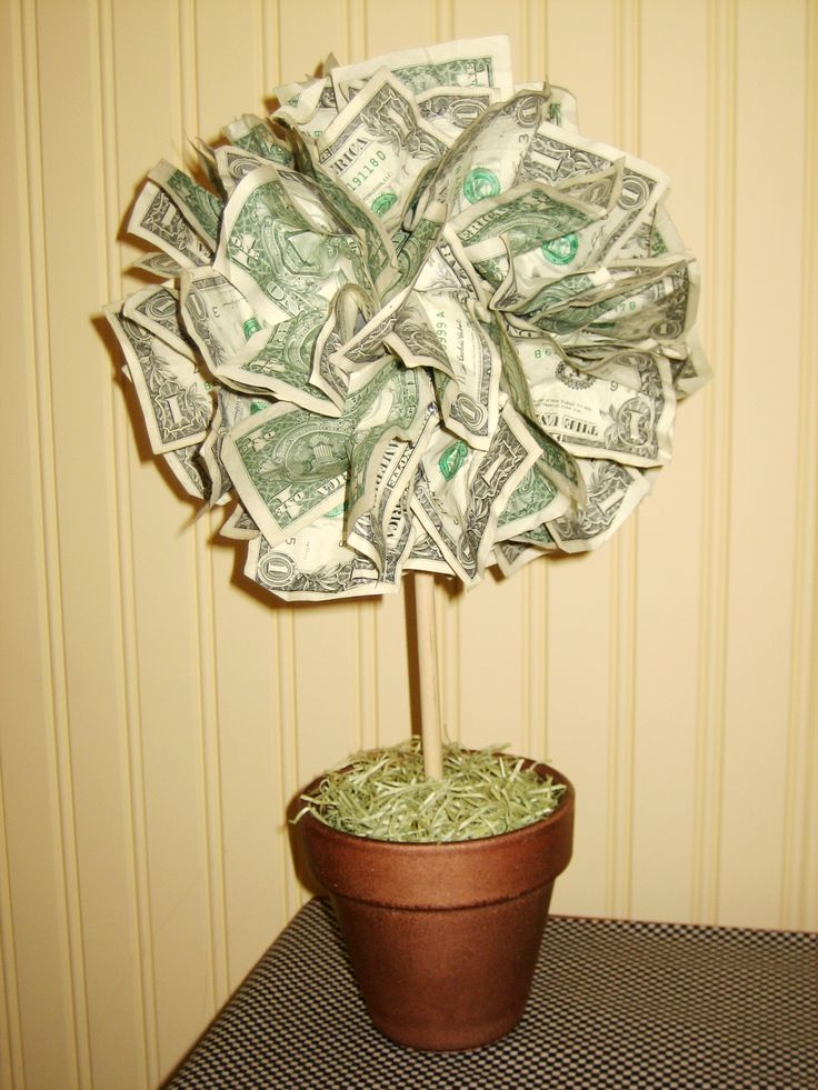 money tree craft ideas pen 237 ze jako svatebn 237 dar magaz 237 n tomikup 4985