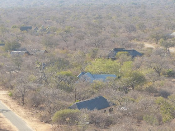 Hoedspruit Wildlife Estate homes, from the perspective of a drone.