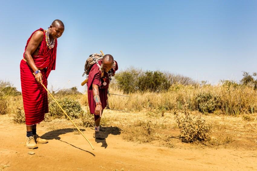 Maasai men tracking
