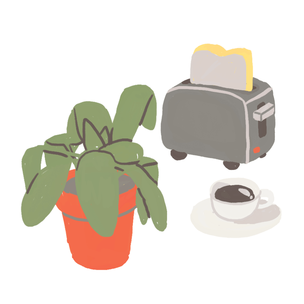 Illustration of ppot plant, toaster and coffee