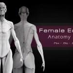 7 Essential Anatomy References Artstation Magazine