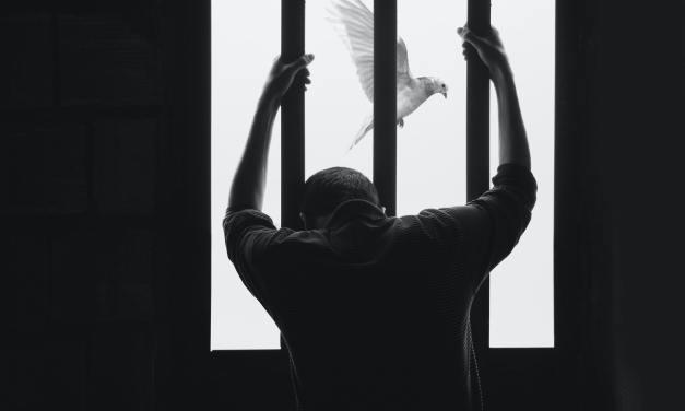 Seeking my Freedom  Against the system