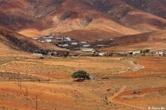 Fuerteventura @ Simona Gosi 07