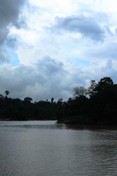 Il fiume Kinabatangan