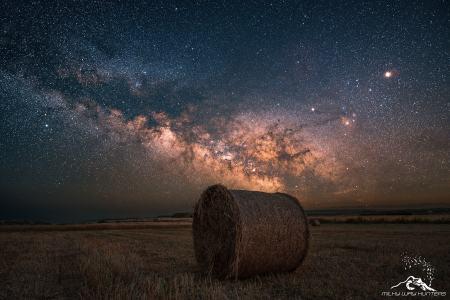 Campi Stellari