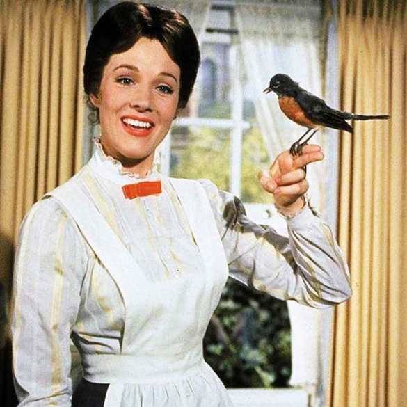 Morceau de sucre Mary Poppins