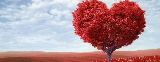Amore come dipendenza per soddisfare un desiderio