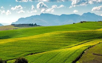 greenitaly 2017 - campo tranquillità ecologia montagne