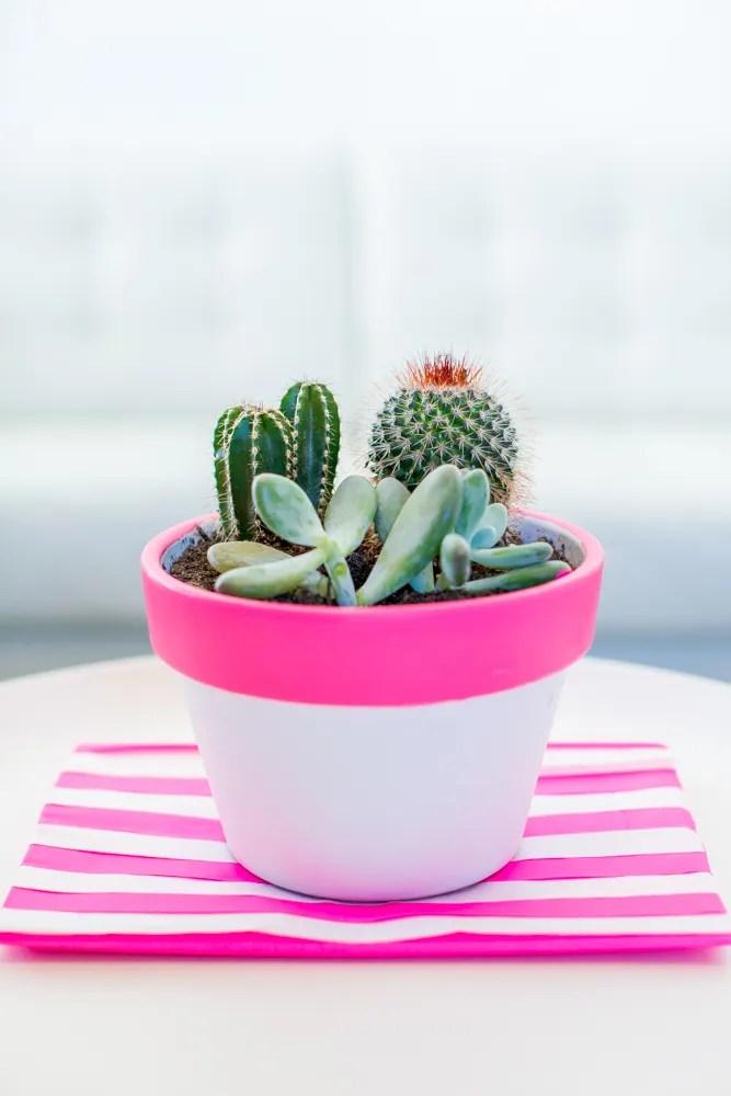 decorare i vasi con il colore