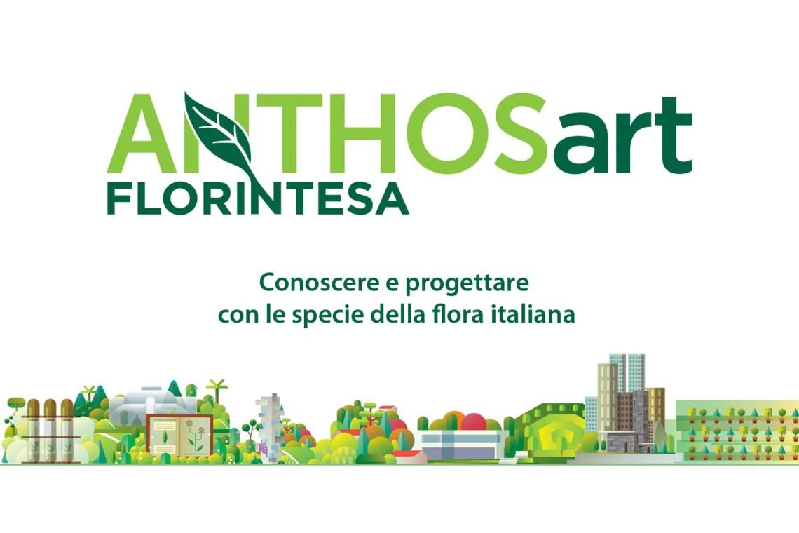 Anthosart-Green-Tool