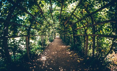 Anthosart-Green-Tool_giardino