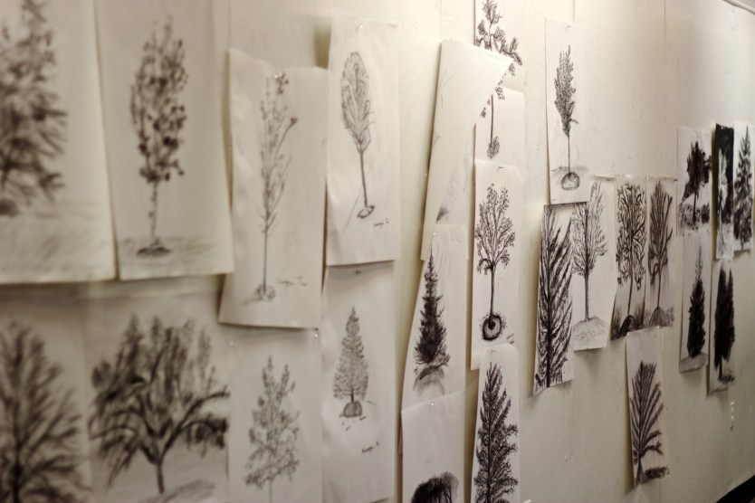 student drawings of trees
