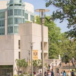UMBC Library