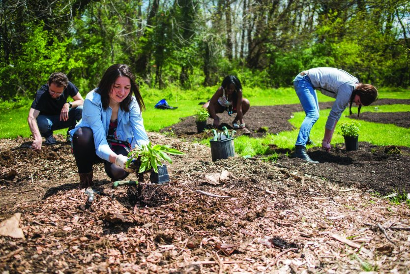 Sondheim Scholars help with a variety of programs, including UMBC's community garden.