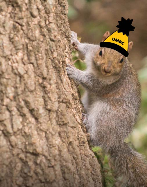 Squirrel with hat drawn on