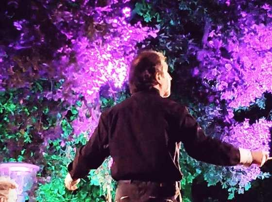 La foto mostra il Maestro Luigi Mariani durante il concerto delle vEyes Orchestra