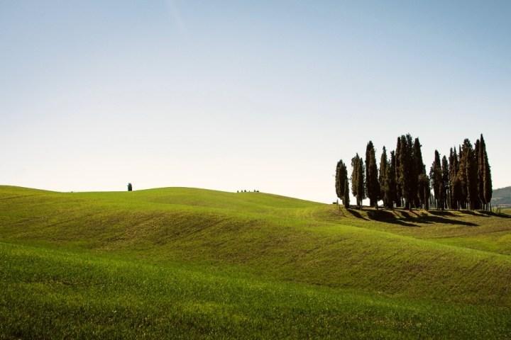 Vista sulle colline della Val d'Orcia, Toscana.