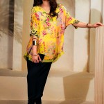 Luxury Silk Wear Collection 2018 by Farida Hasan (4)